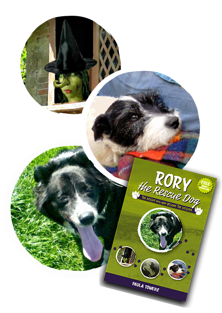 Rory, laddie and a witch alongside the Rory the Rescue Dog book